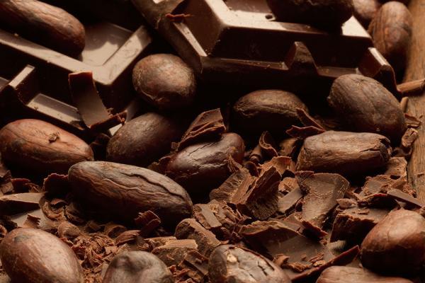 Cacao da varietà Criollo e Trinitario